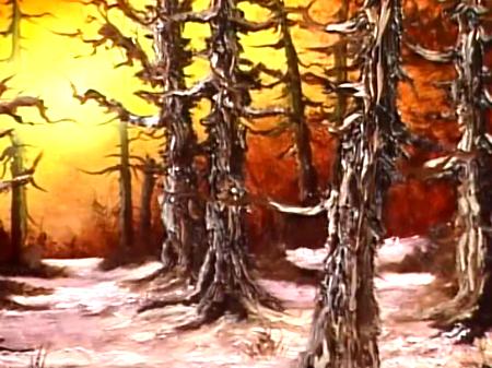 Rustic Winter Woods